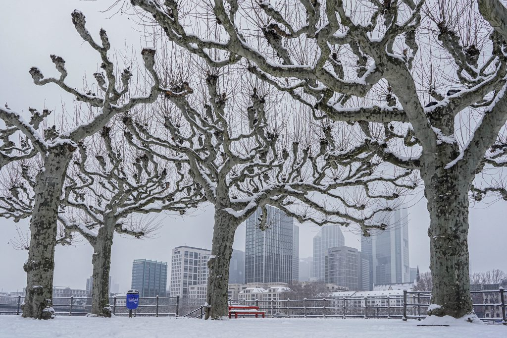 Schnee in Frankfurt